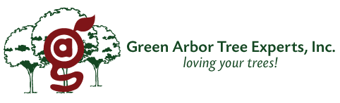 Green Arbor Tree Experts, Inc. | Indianapolis | Certified Arborists